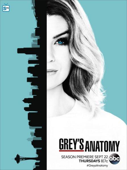 greys-anatomy-season-13-poster