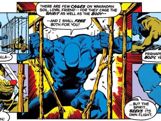 black-panther-panthers-rage