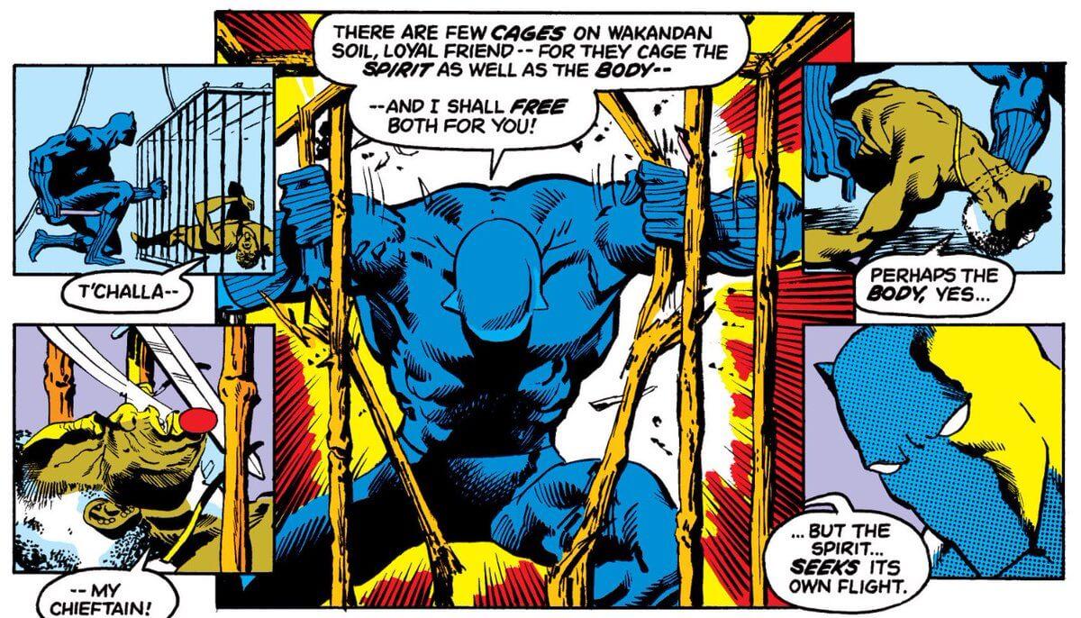 A Fúria do Pantera Negra