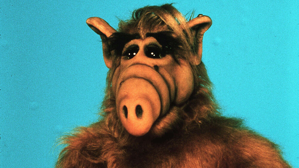 No Merchandising. Editorial Use Only. No Book Cover Usage. Mandatory Credit: Photo by NBC/Kobal/REX/Shutterstock (5877502a) Alf (1986-1990) Alf - 1986-1990 NBC USA Television Alien Life Form / A.L.F.
