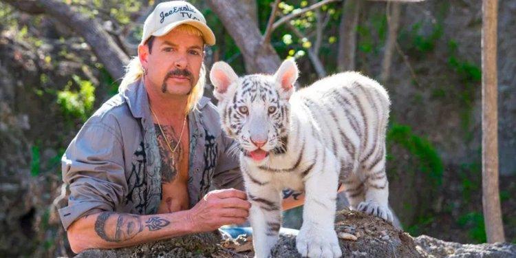A Máfia dos Tigres 2