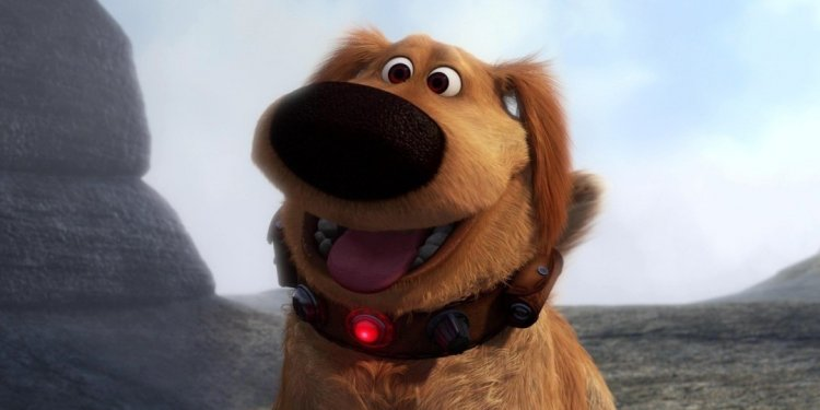 Melhores cães do cinema