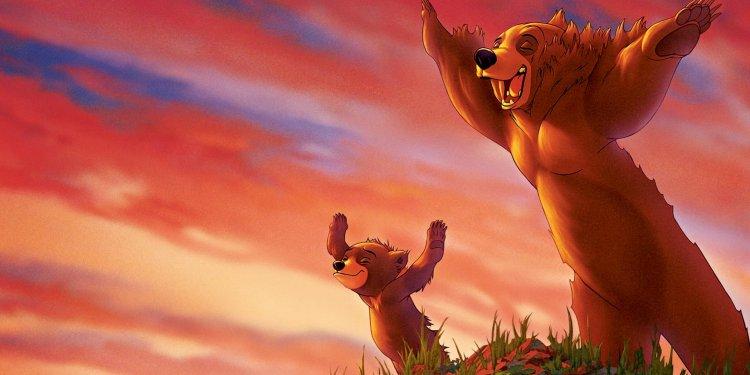 Irmão Urso