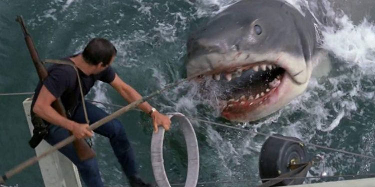 Tubarão (1975) para fãs de Stranger Things