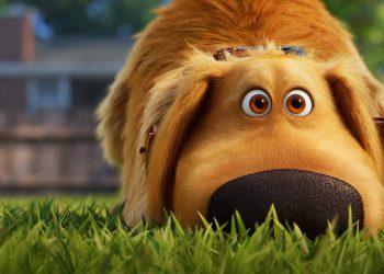 A Vida de Dug | Série de curtas do cão de Up ganha cartaz e trailer